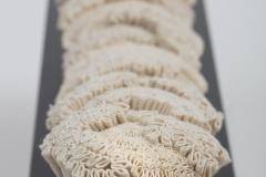 Vague Corallium