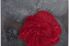 Corallium rouge